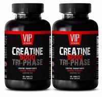 Muscle gain protein powder - CREATINE TRI-PHASE 5000mg 2B - creatine preworkout