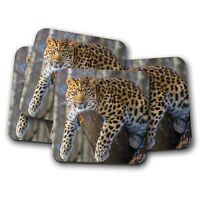 4 Set - Wild Jaguar Coaster - Big Cat Jungle Predator Spots Animal Gift #14954