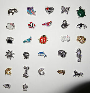 Dog Bird Mascot Pet Animal Floating Charms  Fit Most Living Lockets