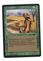 Magic the gathering ~ MTG ~ 1x Citanul Druid ~ Antiquities ~ LP ~ SCANS