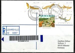 Namibia Cover - Leonardville 17.02.2011 Geckos