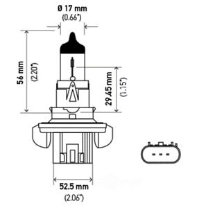 Headlight Bulb Hella H13