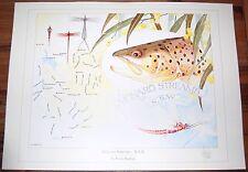 Fly Fishing Artwork - SIGNED Trevor Hawkins Print - Monaro Streams, NSW