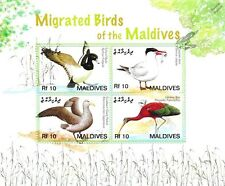 Migrant / Migrated Birds of the Maldives Bird 4v Stamp Sheet #1 (2007)