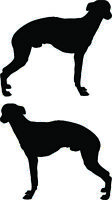 Whippet Snap Dog Wall sticker CUSTOM Silhouette deco cartoon Car Window Laptop