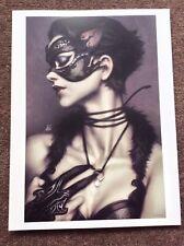 Stanley Lau PRINT Pinup Art CATWOMAN Fantasy DC Comic Artgerm Erotic Burlesque