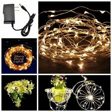 10M 33Ft 100 Leds Starry Copper Wire Warm White string Lights+Power Supply USA