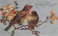 Red Throated Birds on Pink Cherry Blossom Branch~Embossed~Silver Back~1908 PC