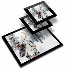 Glass Placemat  & 2x Coaster  - Lapland Reindeer Snowy Chrismas  #16651