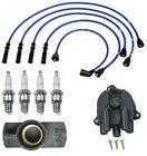 For Isuzu Pickup 1991-1995 2.3L 2.6L Cap+Rotor Wire Set Plugs Tune Up Kit NGK