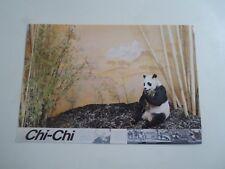 GIANT PANDA CHI-CHI - British Natural History Museum Vintage Postcard §B2612