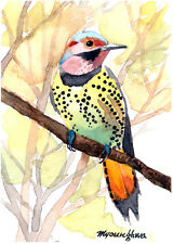 ACEO Limited Edition -Northern flicker,Art print,Woodpecker,Gift for bird lovers