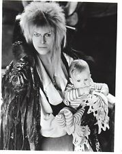 David Bowie  Labyrinth 8x10 glossy Photo #E1930