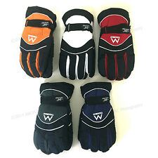 Men's Ski Gloves Insulated Winter Snow Waterproof Warm Colors One Size Fits Most