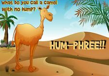 MAGNET Funny Humor Fridge What Do You Call Camel With No Hump