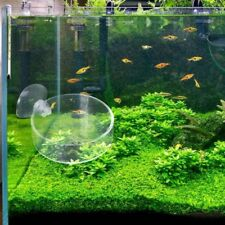 Aquarium Fish Tank Glass Shrimp Feeding Food Dish Bowl Feeder Tray Container