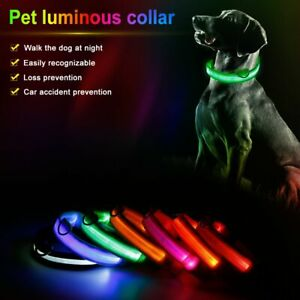 Pet Dog Light Up Collar USB Rechargeable LED Flashing Night Safety Collar