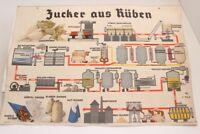 Alte Schulwandtafel Lehrtafel Zucker aus Rüben Kultur Verlag