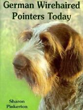 German Wirehaired Pointers Today