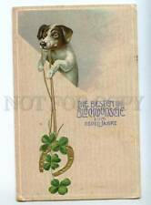 240892 New Year Dog Jack Russell Terrier Vintage postcard