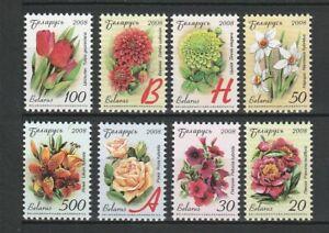 Belarus 2008 Flora Flowers Plants 8 MNH stamps
