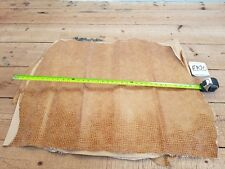 Beige Tan Pig Leather Crocodile Belly 1mm Thick Whole Skin Quality Genuine EB20