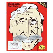 # vieux homme gris&blanc Général de Brigade Moustache Accessoire déguisement