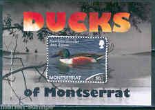 MONTSERRAT DUCKS OF MONTSERRAT SOUVENIR SHEET