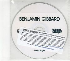 (GM567) Benjamin Gibbard, Teardrop Windows - 2011 DJ CD