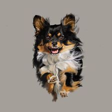 Print - Long Hair Chihuahua - Wind Blown Look