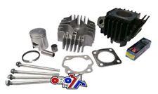 New Suzuki LT 50 87-06 CYLINDER KIT Head Block Piston Rings Gasket LT50 Quad ATV