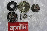 Aprilia SR 50 R Factory Variomatic Variomatic Vario Schaltung Lüfterrad #R7480