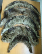 MINT 5 RACCOON (RACOON) FUR COLLAR SCARF LOT WRAP WOMEN WOMEN