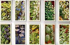 Brooke Bond. A full set of 50 cards, B13: 'Wild Flowers' Series 3.