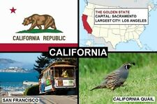 SOUVENIR FRIDGE MAGNET of THE STATE OF CALIFORNIA USA