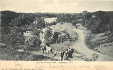 Rochester New York~North Park~Boys Push Bikes Up Hill Paths~Ladies~1904 Postcard