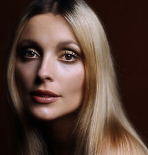 Sharon Tate UNSIGNED photo - B2138 - Valley of the Dolls and Eye of the Devil