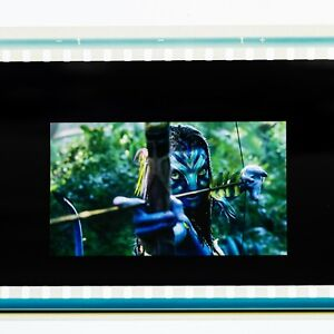 Avatar IMAX 15/70mm film cell from trailer