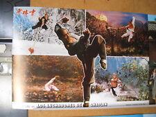 890  LOS LUCHADORES DE SHAOLIN. JET LEE