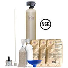 """pH Neutralizer/Acid Neutralizing System w/ 10"""" X 54"""" Tank & Fleck 5600 12 Day"""
