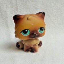 LITTLEST PETSHOP LPS #22  HASBRO CAT CHAT PERSAN MARRON ROUX YEUX VERT AIMNT ROU