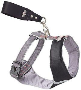 Padded Comfort Harness