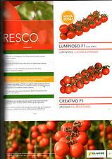 clause sementi pomodoro dolcetini f1 mini plum grappolo b x 1000 semi