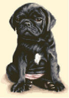 BLACK PUG puppy dog - complete counted cross stitch sewing kit