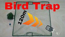 Vogelfalle 1m x 1m Schlagnetz  bird trap Fernbedienung   Tauben Falle Stieglitz.