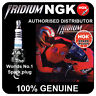 NGK Iridium IX Spark Plug fits HARLEY Sportster 1200 All Models 1200 88-> [DCPR7
