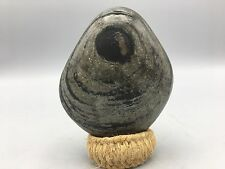 Y2 Natural polished Viewing stone suiseki-Amazing amazing pattern specimen