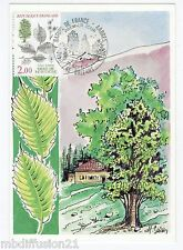 1985 / fdc Cp * nature of France-elms mountain - * stamp y/t.2385