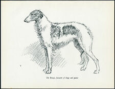 BORZOI LOVELY IMAGE VINTAGE 1930'S DOG ART PRINT by KF BARKER