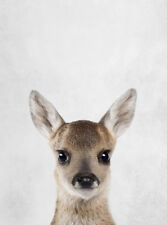 CUTE BABY DEER FAWN  * LARGE A3 SIZE QUALITY CANVAS PRINT